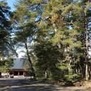 xt3で撮影する毛越寺を正面から見た風景写真