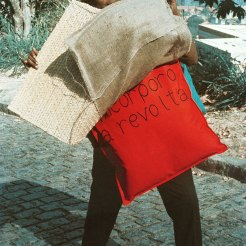 Photograph by Claudio Oiticica