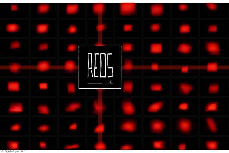 Reds | Art Books - Dominique Dol | Visual Art - Photobooks - Culture - Books - Artist - Photography Books | Official Website