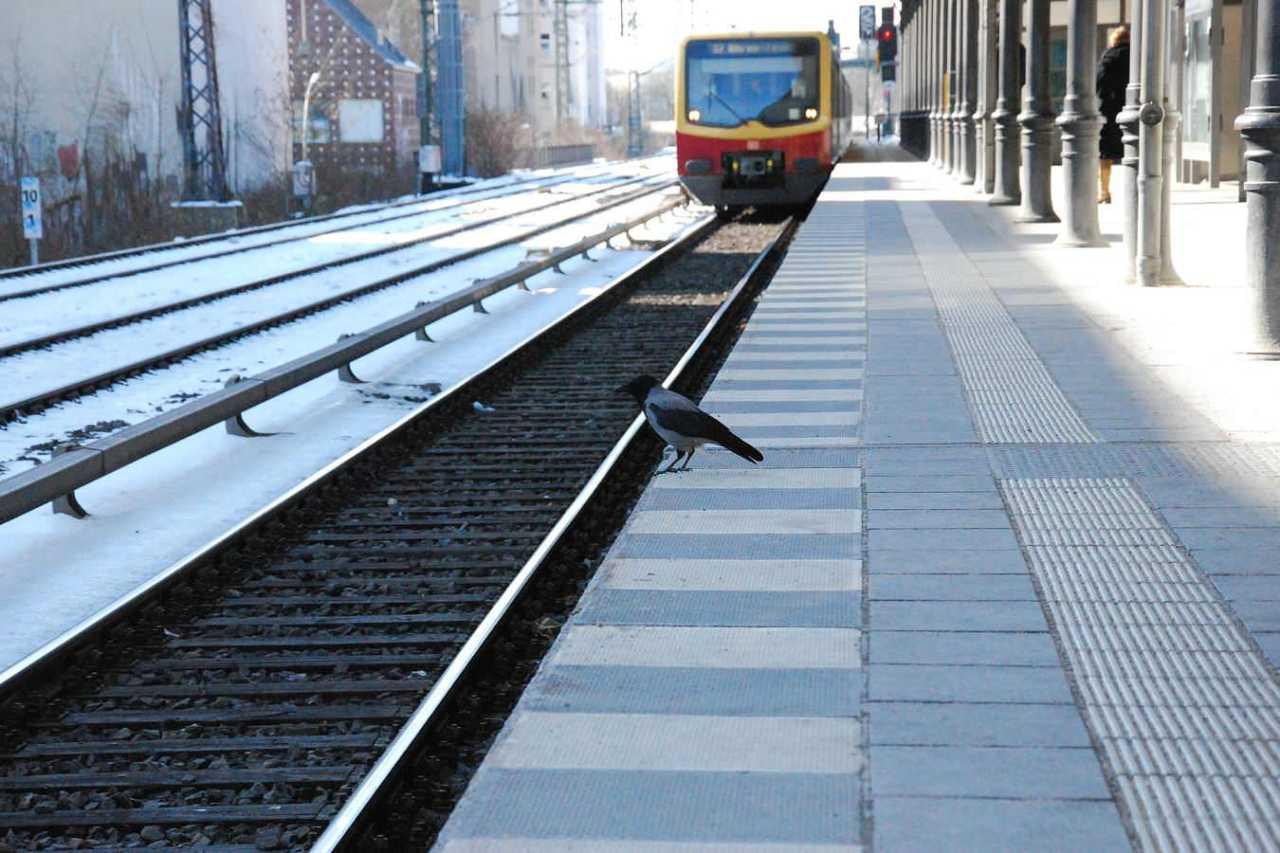逆方向!違う路線だった!電車を乗り間違えたときの3つの対処法