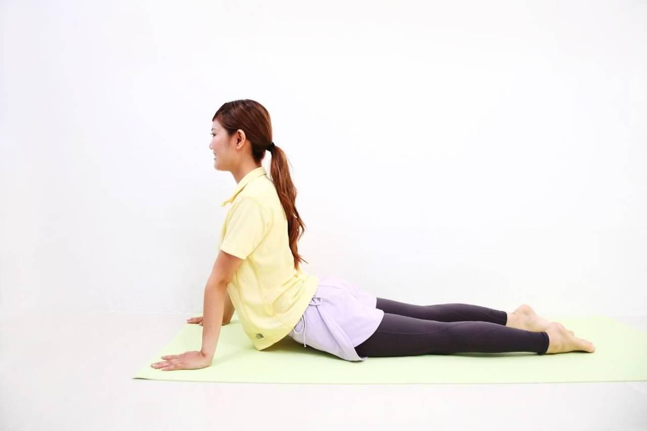 自宅やオフィスでストレッチ!体幹を鍛える簡単トレーニング方法4選