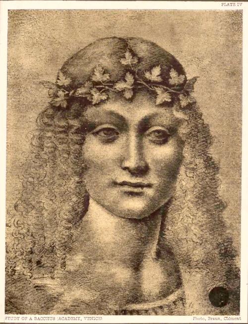Леонардо да винчи голова Вакха