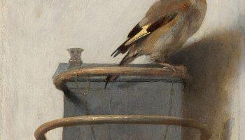 «Щегол» Фабрициуса: картина забытого гения