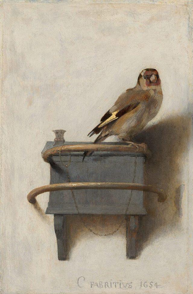 Карел Фабрициус. Щегол. 33,5 х 22,8 см. 1654 г. Королевская галерея Маурицхейс, Гаага