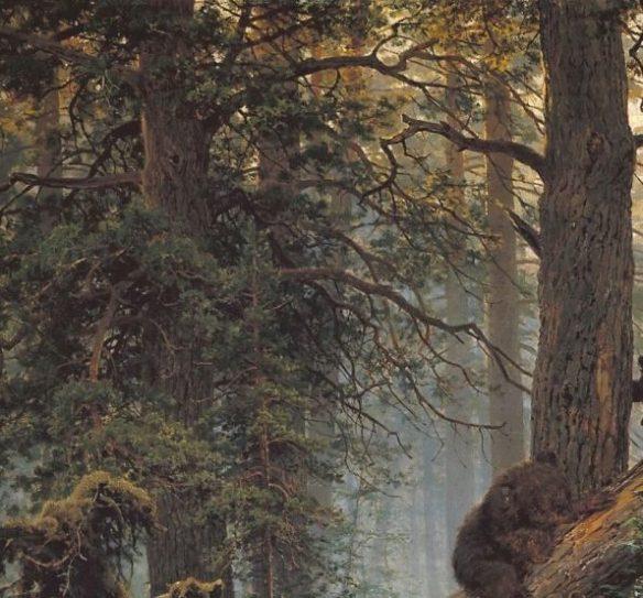 Шишкин Утро в сосновом лесу фрагмент