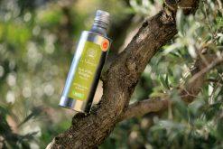 Domaine de la Vallongue - Huile d'olive