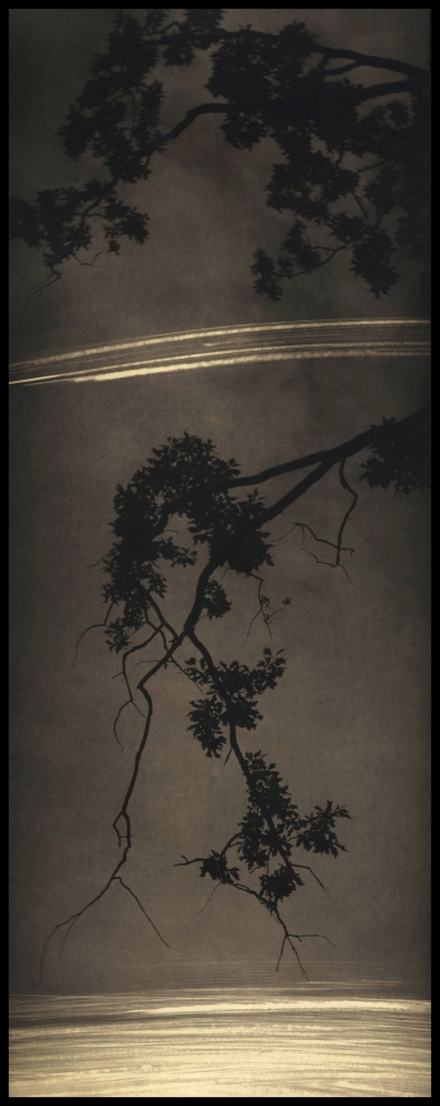 Marky Kauffmann, COMET TAILS (2015), archival inkjet print, 18x7.5 in