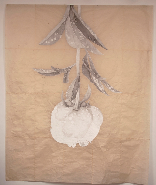Meg Alexander, MARDEN PEONY: AFTER THE RAIN (2015), Absorbent ground, acrylic gesso, India ink and graphite on Nepal paper, 8.5x10 ft. The work will exhibit in THE POWER OF THE FLOWER at ConcordArt (6/14-8/12).
