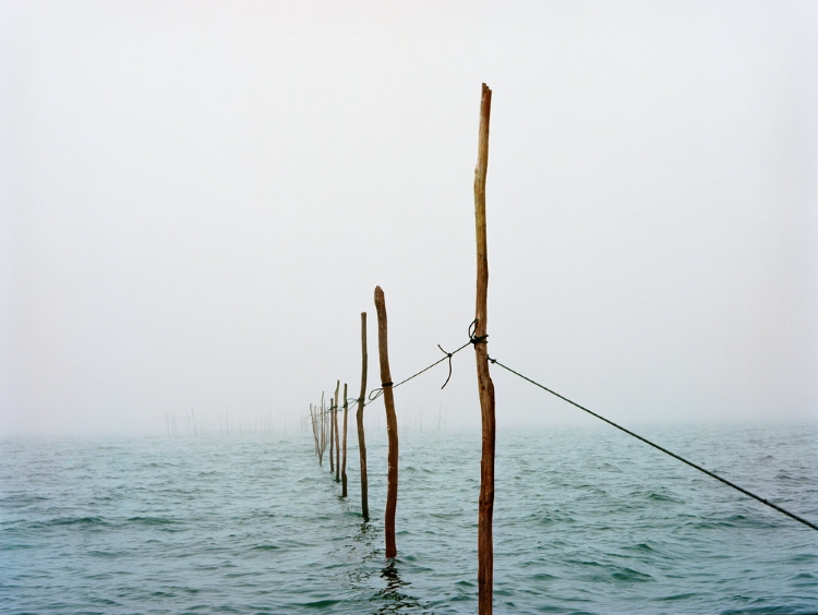 Holly Lynton, WEIR FISHING, CHATHAM, MASSACHUSETTS