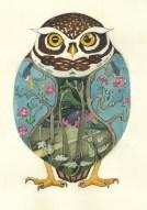 Daniel Mackie, Little Owl