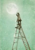 Eric Fan, Waning Moon
