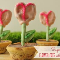 Sugar Cookie Flower Pots Treat with Nestle Toll House Rolled & Ready Cookie Sheets