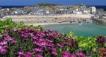 St Ives Tate in Bloom