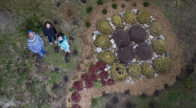 Eden River of Life installation encourages visitors to reflect on their experiences with nature