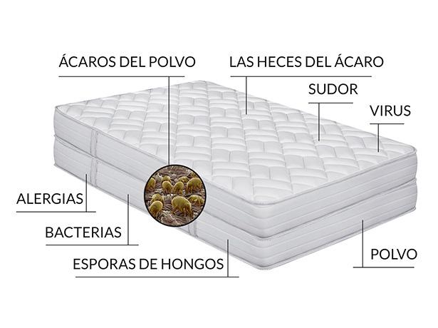 ¿Qué hay en un colchón?