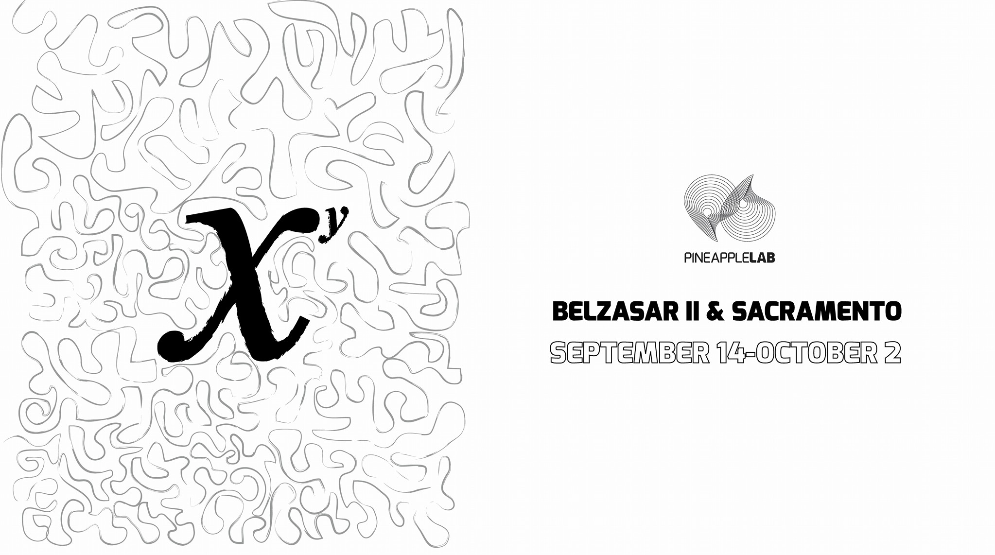 XY Exhibit Featuring the Works of Belzasar II and
