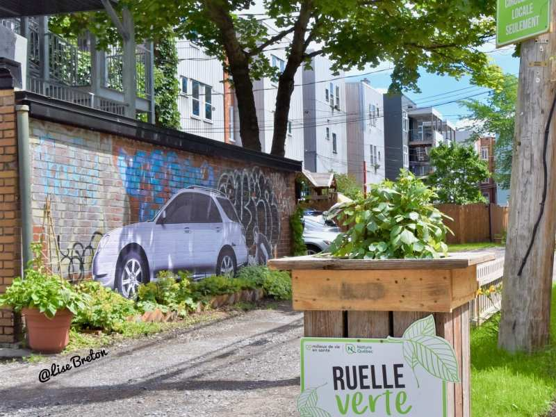 L'entrée de la ruelle verte Le Grand Peuplier Photo @Lise Breton