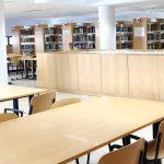 Biblioteca Universitária: E Depois? : Notícia BAD