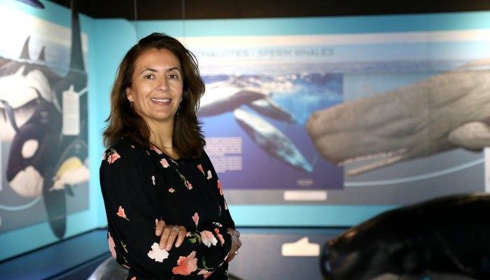 Veja A Entrevista Sobre O Projecto 4-OCEANS, Concedida Hoje Pela Investigadora D…