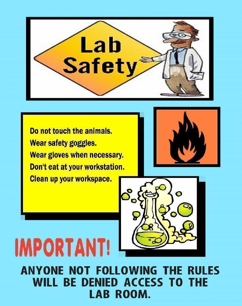 Funny Lab Safety Pictures : funny, safety, pictures, Science, Project, About, Safety, Rules, Poster, Ideas