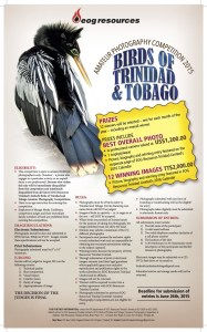 EOG Birds of Trinidad and Tobago Amateur Photography Competition 2015‏