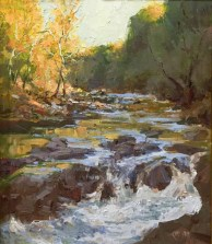 """Sponsor's Choice-Hillsborough Tourism Board: """"Morning on the Eno"""" by Chad Smith"""