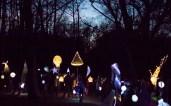 Lantern-6902