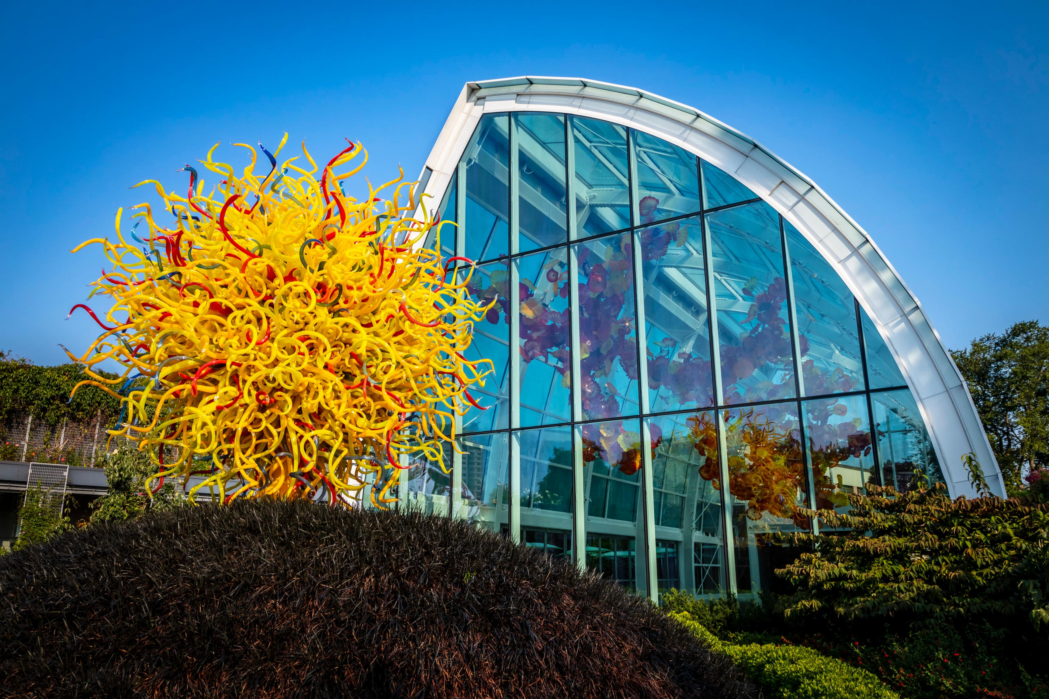 Chihuly gardens & glass chihuly, dale, rose, barbara, roberts, lisa c., mcdonnell, mark, garfield park conservatory (chicago, ill.) on amazon.com. Dale Chihuly Pioneering Glass Artist Is Building A Major Legacy Artsy