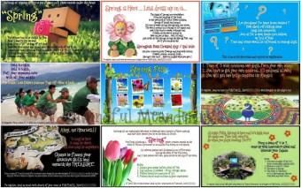 Spring festival pamplets