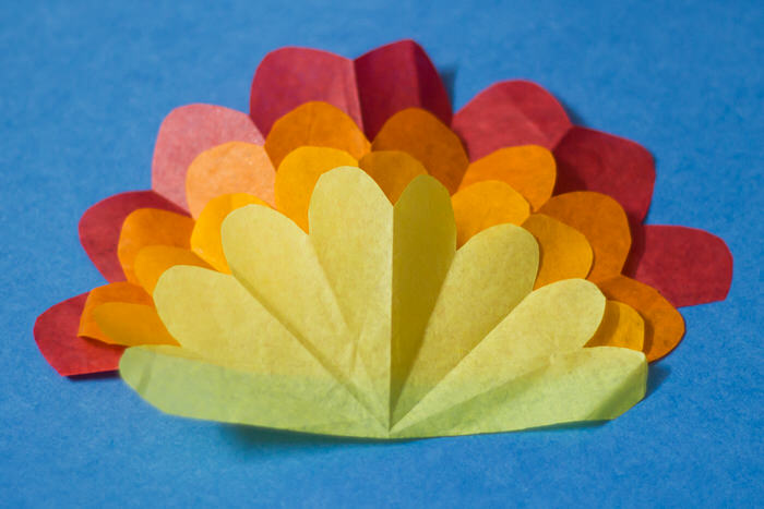 tissue paper turkey-8035