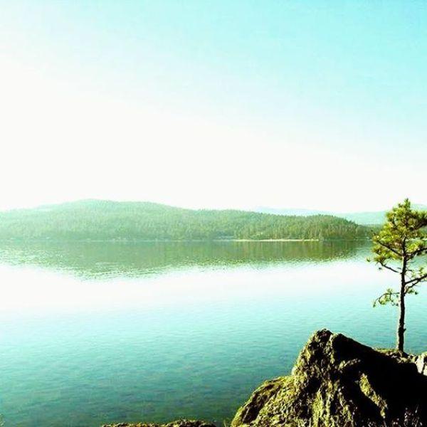Lake Coeur dAlene | How I deal with artistic inspiration overload | artsy forager #artistblog #art #artists #inspiration