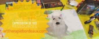 L'animal Ressource en Art-Thérapie Evolutive® au cabinet de Carignan-de-Bordeaux