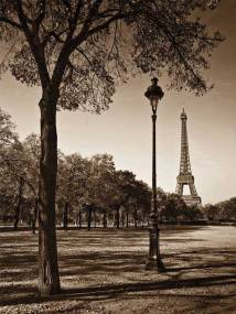 An Afternoon Stroll- Paris I