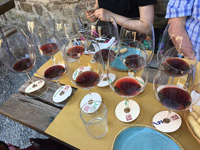 Wine tasting at the castle