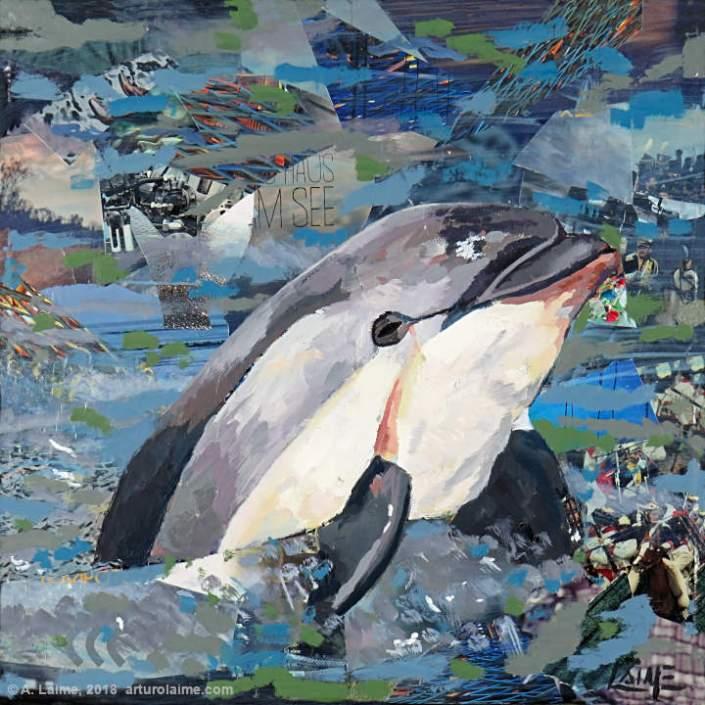 Vaquita dolphin painting