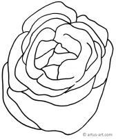Salat Ausmalbild » Gratis Ausdrucken & Ausmalen » Artus Art