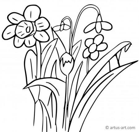 Ausmalbild Blumenwiese Kostenlos Kinder Ausmalbilder