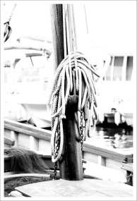 Barques au Port - Saint Cyprien Plage (4 sur 6)