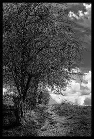 photo Margny-5-resized