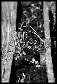 photo Margny-7-resized
