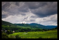 Alsace_2016-13-resized