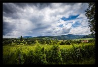 Alsace_2016-21-resized