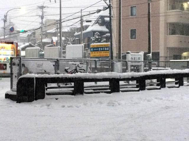 2016住吉の雪3