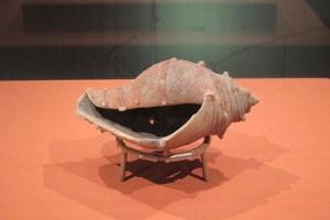 「巻貝形土製品」 新潟県村上市上山出土