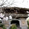 古代長崎の中心 野母崎の観音寺