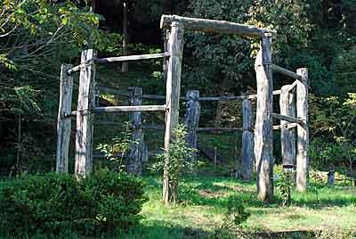 桜町遺跡の環状木柱列