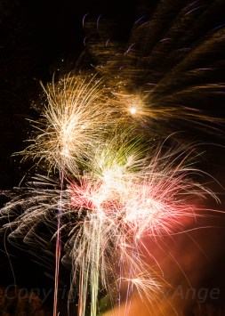Fireworks at Chelsea Park-2
