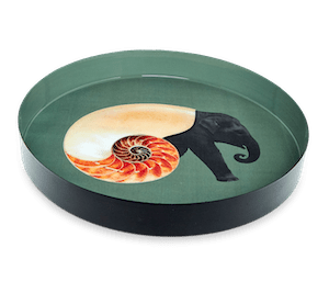 gangzai-plateaurond Shellephant P