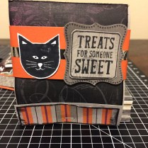 CTMH Nevermore Paper Pack & Trick or Treat Sweets Halloween Matchbook Treat Holder featuring the Black Cat