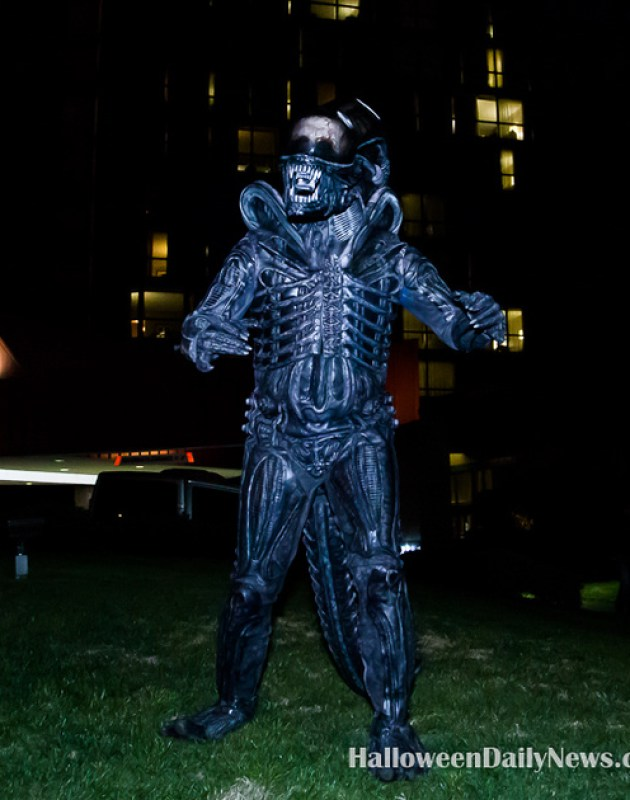 Costume Contest Winner Nick Boings